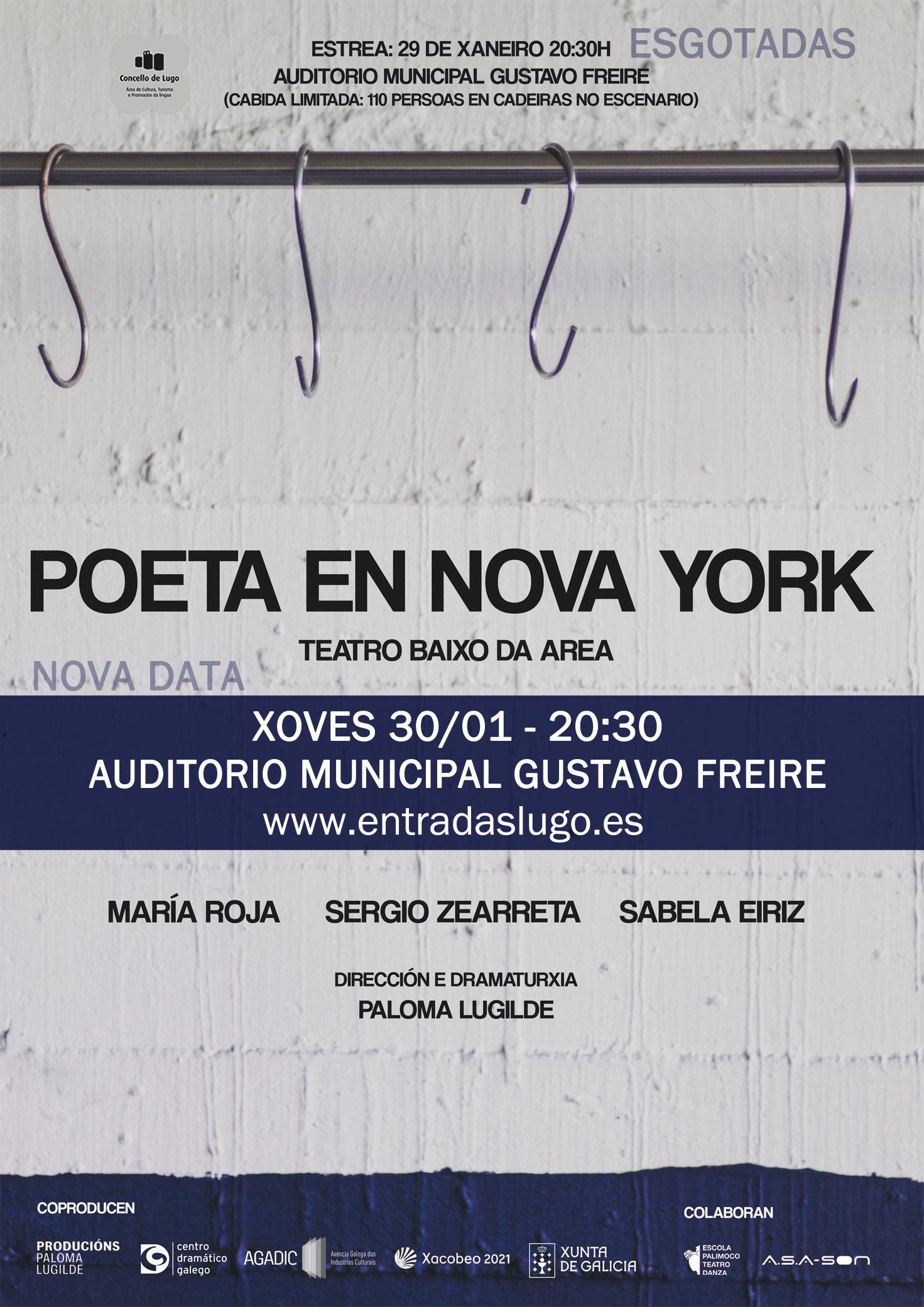Cartel de Teatro: Poeta en Nova York no Auditorio Gustavo Freire