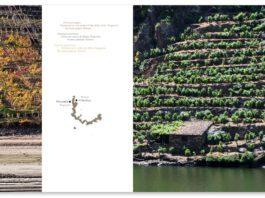 A candidatura da Ribeira Sacra a Patrimonio Mundial da Unesco estrea web