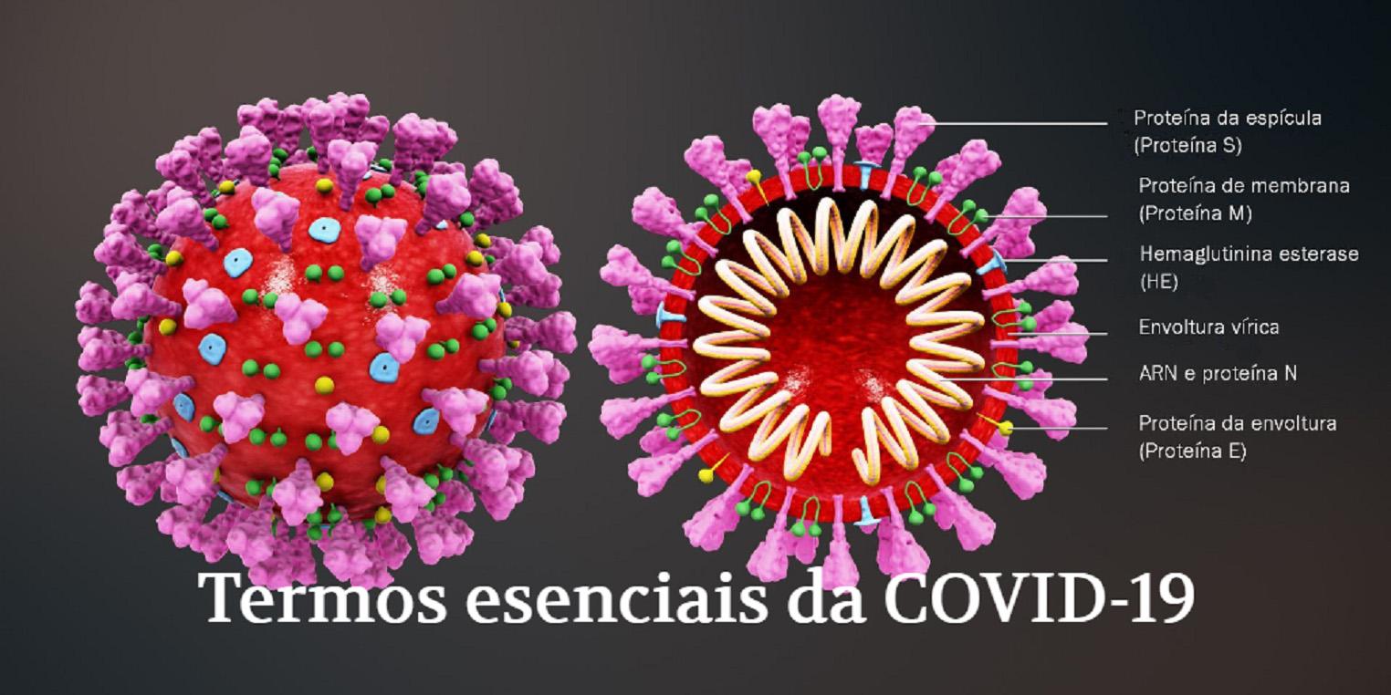 Vocabulario en galego sobre a COVID-19