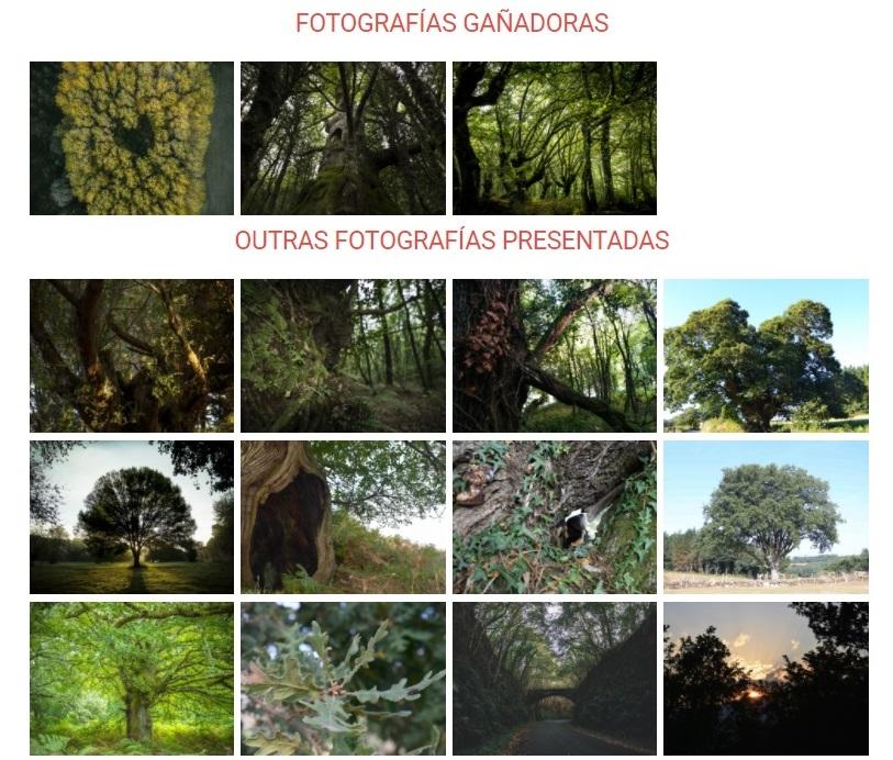 Exposición virtual das Reservas da Biosfera de Lugo