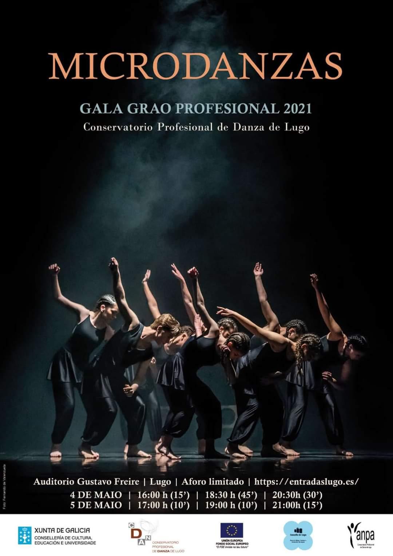 "Danza - Gala ""Microdanzas"""